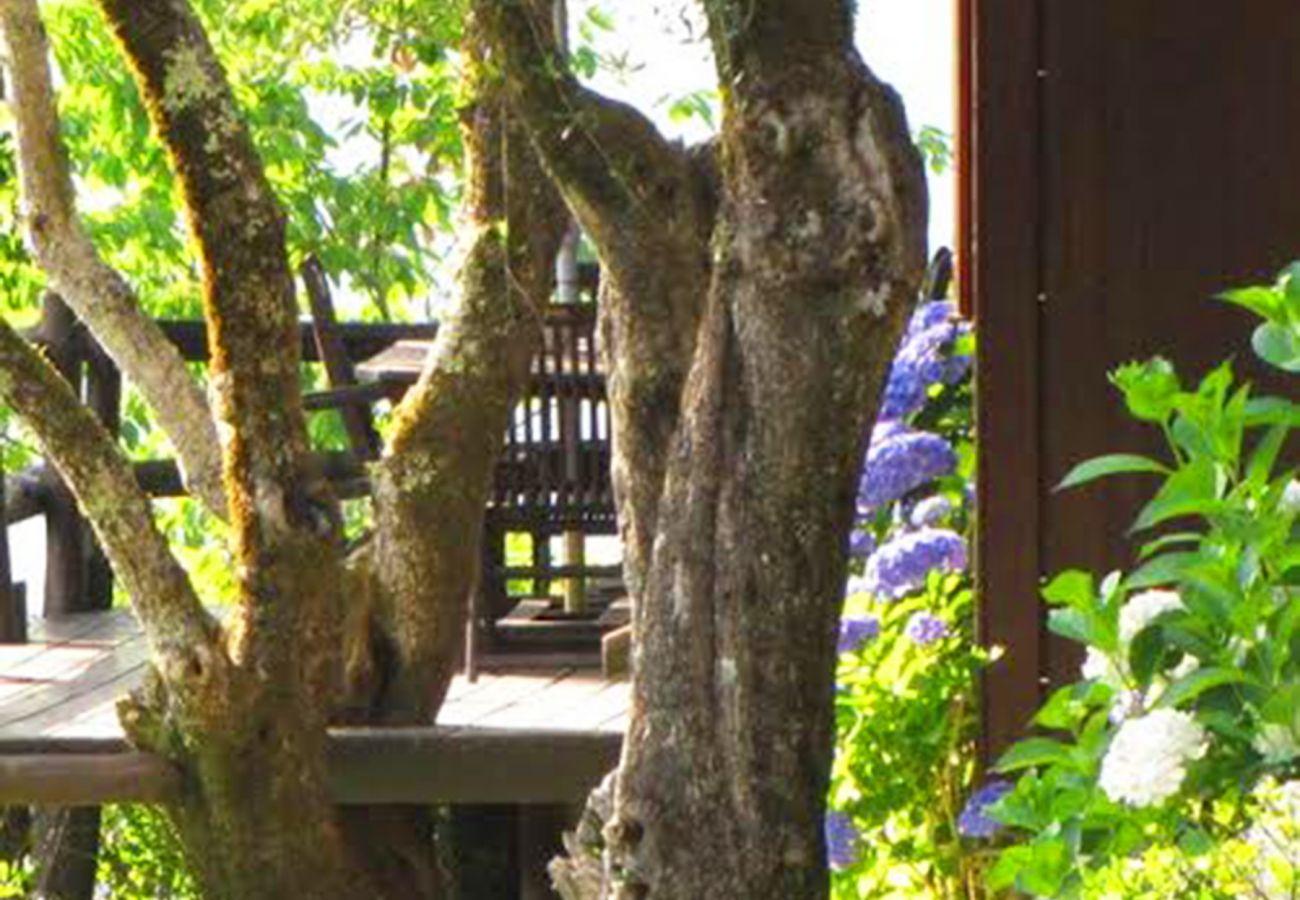 Casa rural em Vieira do Minho - Casa de Campo da Quebrada