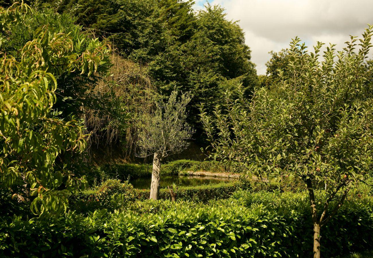 Quarto em Vieira do Minho - Quarto Twin - Quinta de Barbêdo